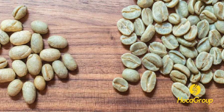 Bên trái là cà phê culi, bên phải là cà phê nhân cao cấp