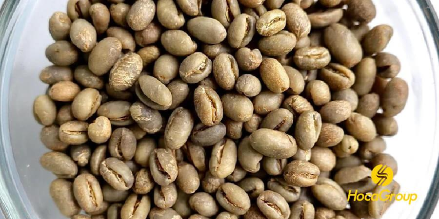 Cà phê culi (Peaberry) chưa rang