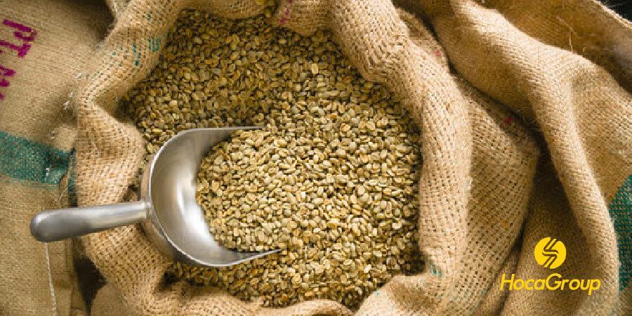 túi cà phê nhân sẵn sàng để rang sử dụng pha phin và espresso