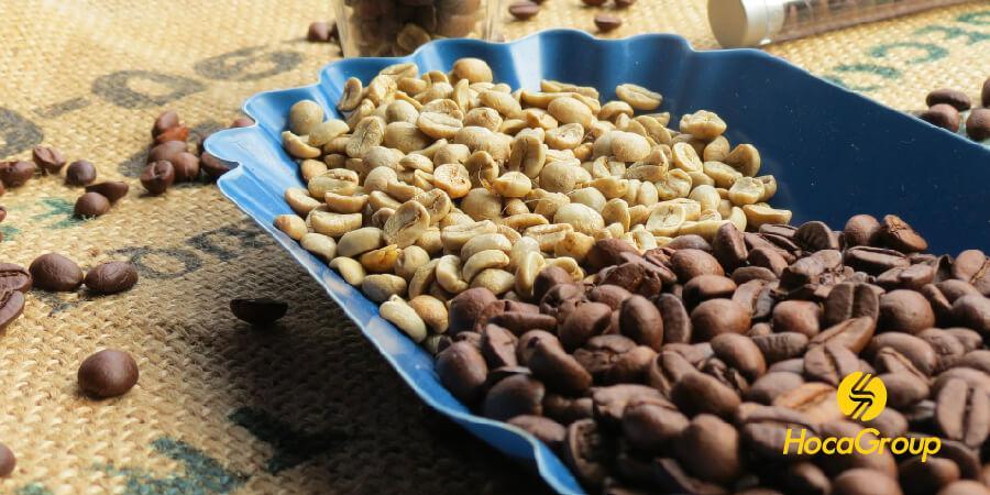 Một khay hạt cà phê xanh