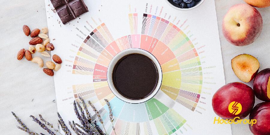 Buổi đào tạo cảm giác với cà phê, Acidity hữu cơ và trái cây