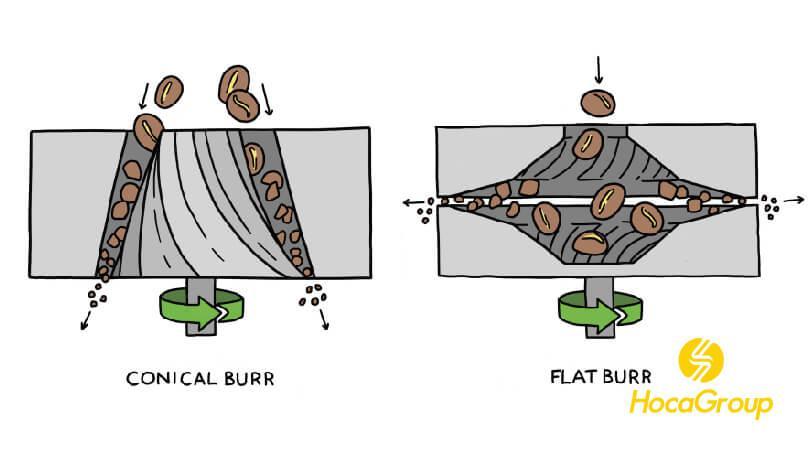 So Sánh Lưỡi Dao Hình Nón (Conical) VS Lưỡi Dao Phẳng (Flat Burrs)